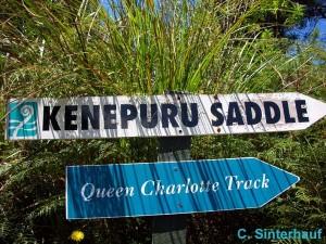 Wegweiser auf dem Queen Charlotte Track