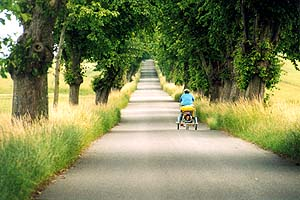 Traumstraßen in Dänemark