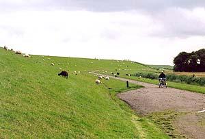 """Auf der """"Gaga""""-Route an der Friesischen Küste"""