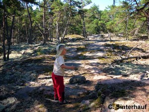 Wanderung in den Schärengärten