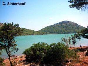 Der See Mir