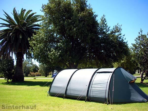 Zelten unter Palmen in Adelaide
