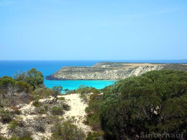 Traumhafte Buchen auf Kangaroo Island