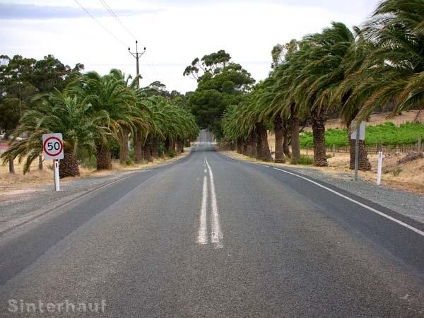 Straße im Barossa Valley