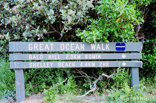 Beginn des Great Ocean Walks