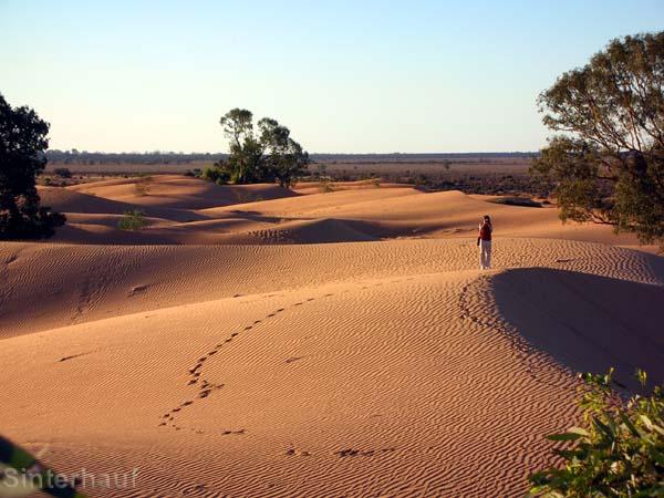 Sanddünen bei Broken Hill