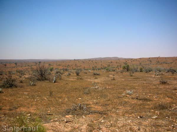 Der Zeit geraubte Wüste