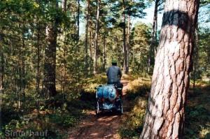 Radstrecke im Norden Ölands