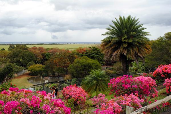 Blick von einer Anhöhe über den Park und das Umland