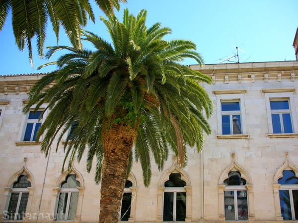 Trogir - zwischen Kultur und Karibik