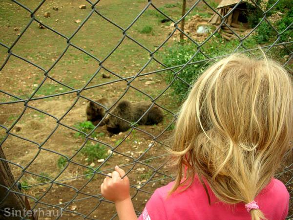 Tiere sind immer wieder spannend für Kinder