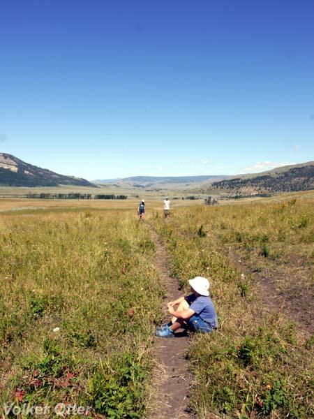 Wanderung Lamar River Trail
