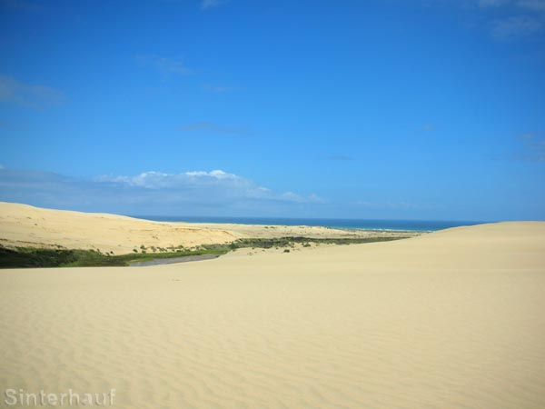 Riesige Sanddünen am Rande des Beaches
