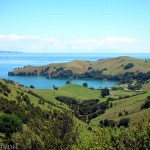 Die Coromandel Peninsula