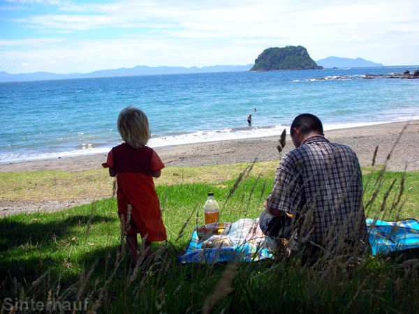 Picknicken an den Stränden von Coromandel
