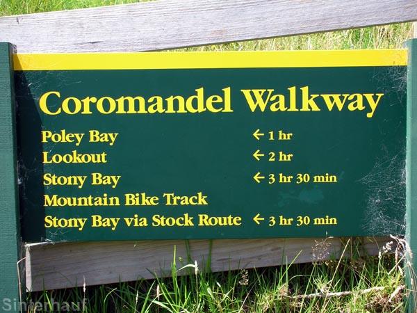 Coromandel Walkway