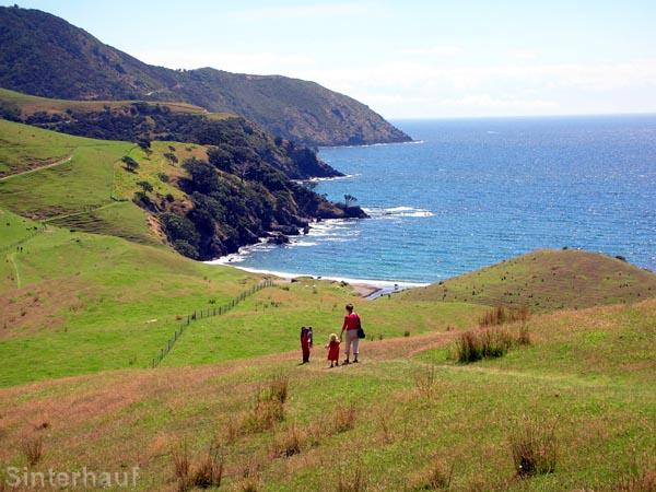 Die Nordküste Coromandels