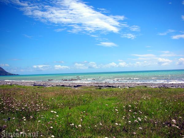 Die einsame Ostküste der Nordinsel Neuseelands