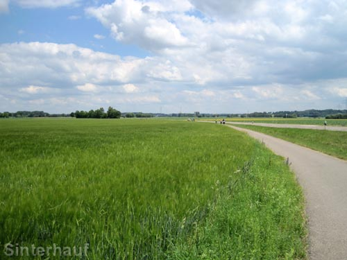 Auf dem Donauradweg
