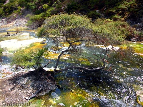 Flusslauf im Geothermalgebiet