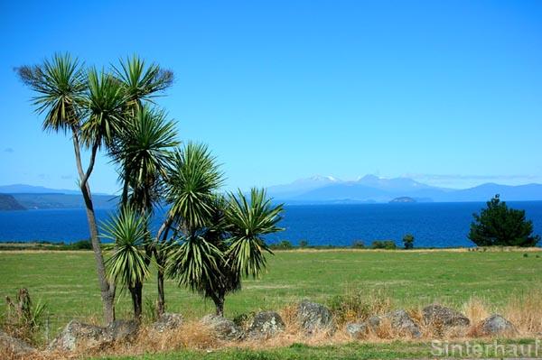 Lake Taupo auf der Nordinsel Neuseelands