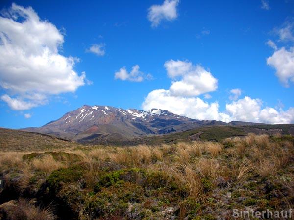 Die schneebedeckten Vulkane im Tongariro NP