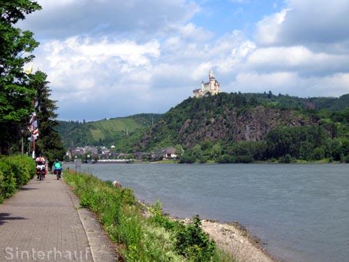 Der Rhein-Radweg am Oberrhein bei Koblenz