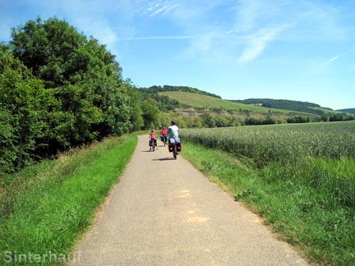 Der Mainradweg bei Würzburg