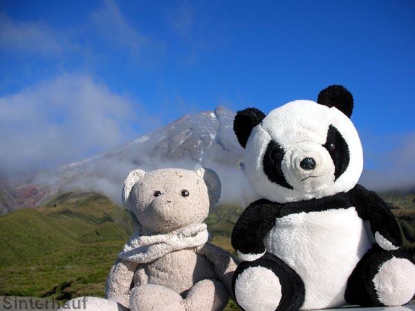 Unsere wichtigsten Reisebegleiter