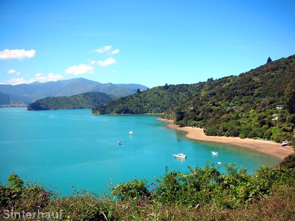 Die Marlborough Sounds