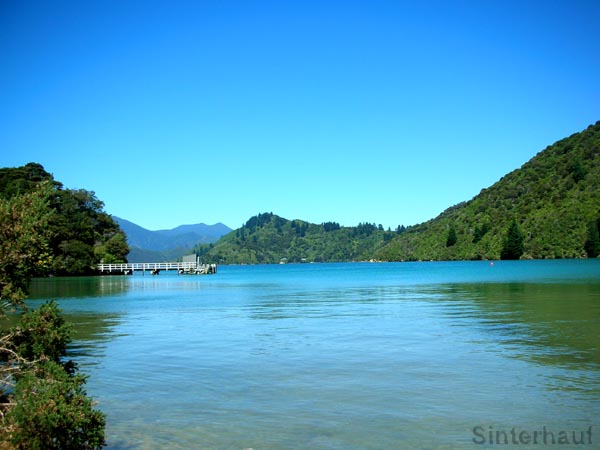 Ruhige See in den Marlborough Sounds