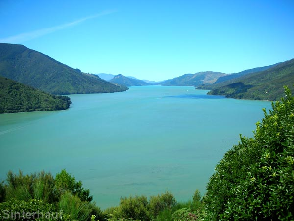 In den Marlborough Sounds