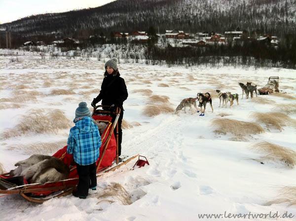 Hundeschlittenabenteuer in Lappland