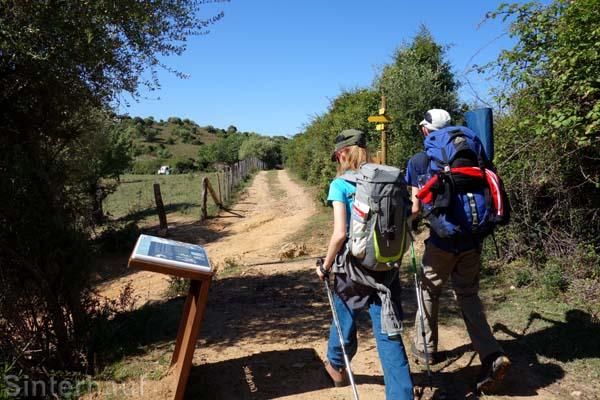 Seltene Forstwege auf dem Mare e Monti