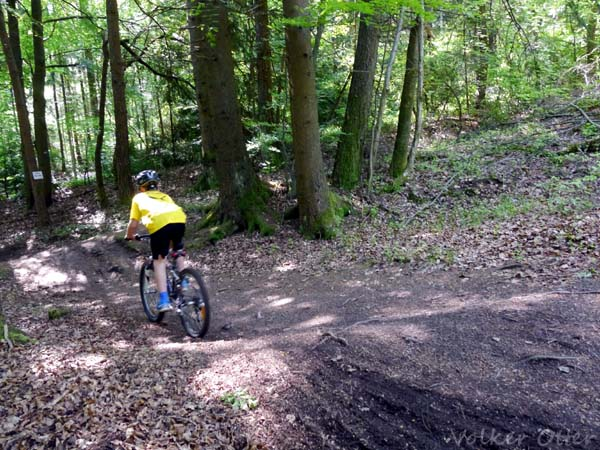 Kindgerechte Trails in der Rhön