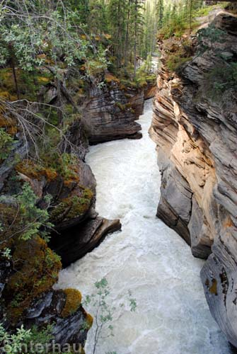Schlucht an den Athabasca Falls