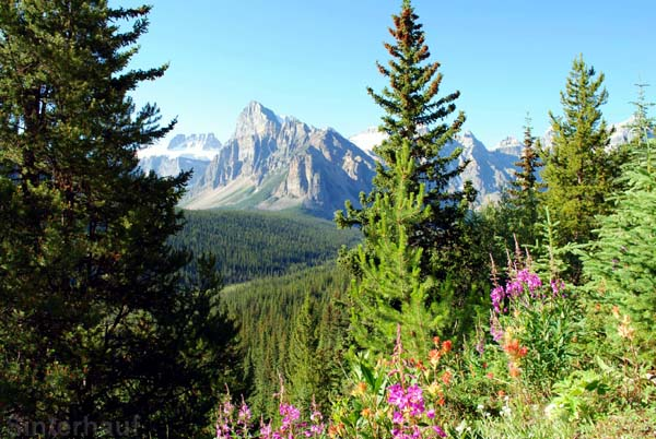 Reisen mit Kindern in Kanadas Westen