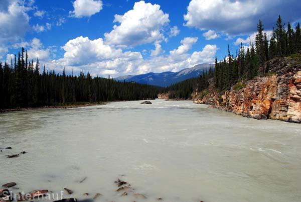 Fluss bei den Athabasca Falls