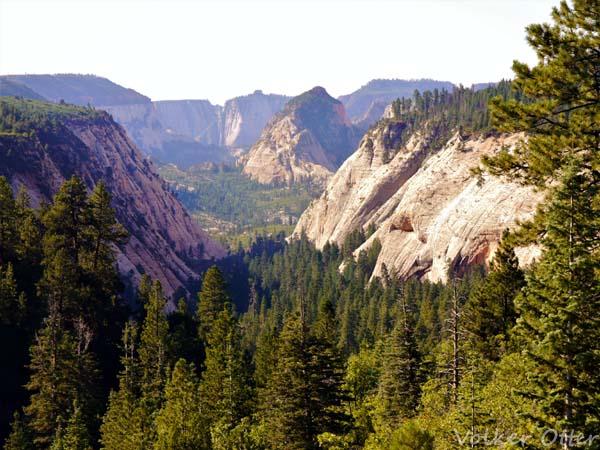 wildcat-canyon-kopie