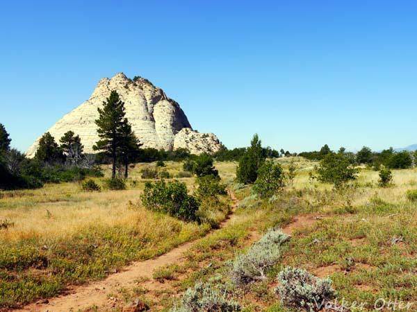 Einsamkeit im Zion Nationalpark