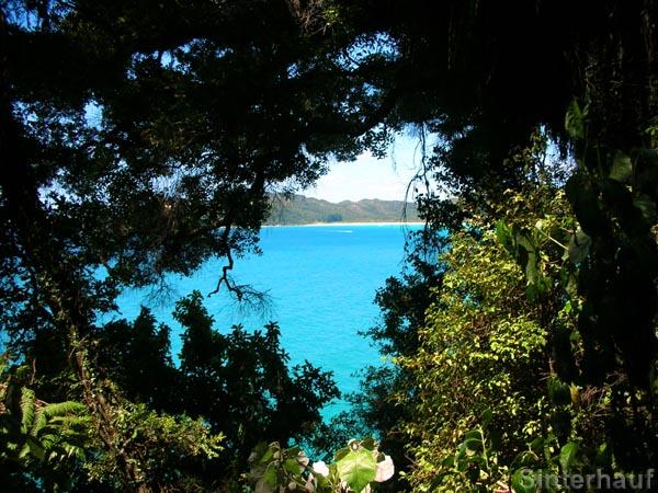 Traumhafte Ausblicke im Abel Tasman NP