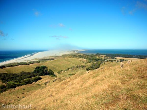 Weite Ausblicke auf die Halbinsel Farewell Spit