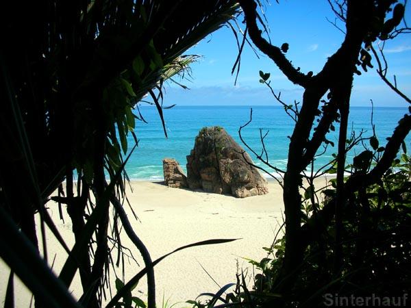 Nordwestküste Neuseelands - wir werden dich vermissen!