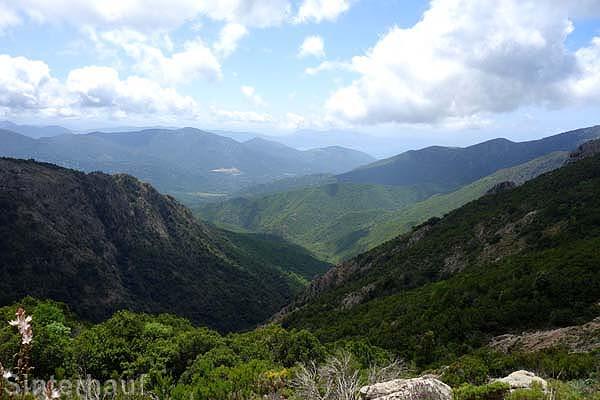mit Blick in die Berge