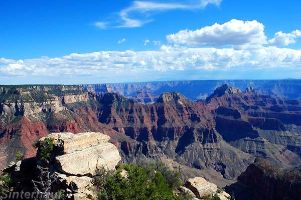 Der Grand Canyon North Rim