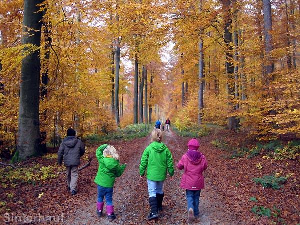 Wandern mit Kindern im Spessart