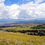 Der Yellowstone National Park in Wyoming