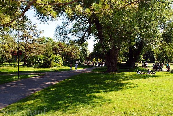 Parkanlage auf Toronto Islands