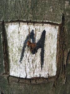 Das M markiert den Malerweg