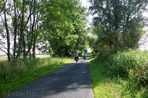 Auf dem Wikinger-Friesen-Weg